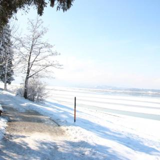 Uferweg entlang des ausgelassenen Forggensees