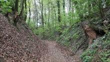 R 05: Durch die Baumberge zwischen Billerbeck und Nottuln