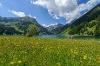 Am Vilsalpsee  - @ Autor: Tourismusverband Tannheimer Tal  - © Quelle: Tourismusverband Tannheimer Tal