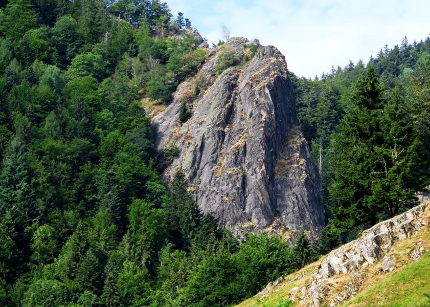 Brandenpfad (Wildnispfad Branden-Stampfbach)