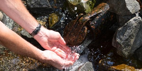 Zurück zum Ursprung - Quellwasser erfrischt