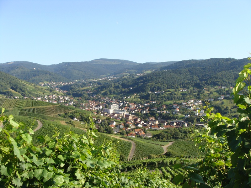 Liehenbach-Rundweg
