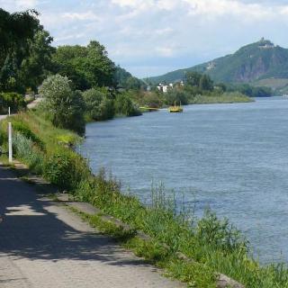 Ausblicke vom linken Rheinufer