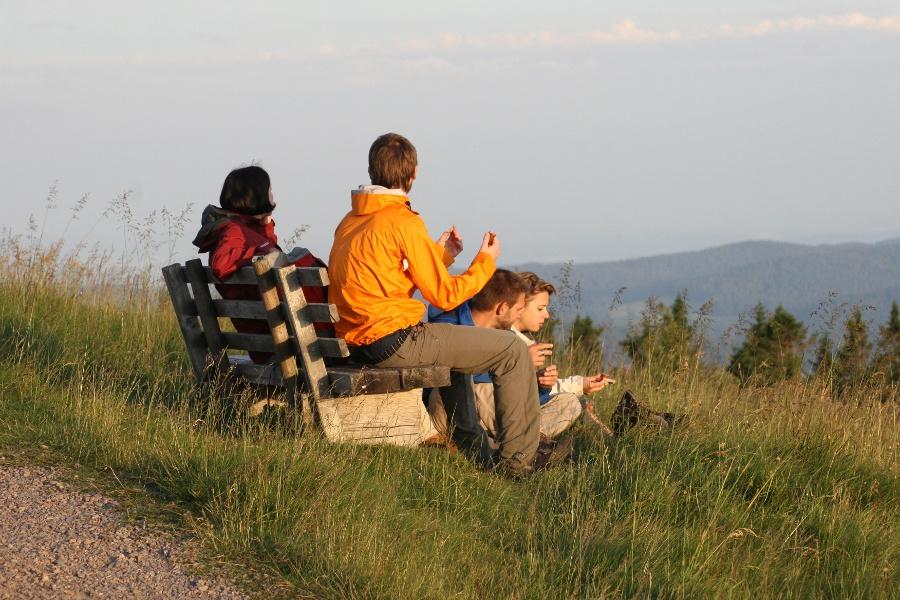 3. Etappe WoG 4-tägig: Von Münstertal zum Wiedener Eck