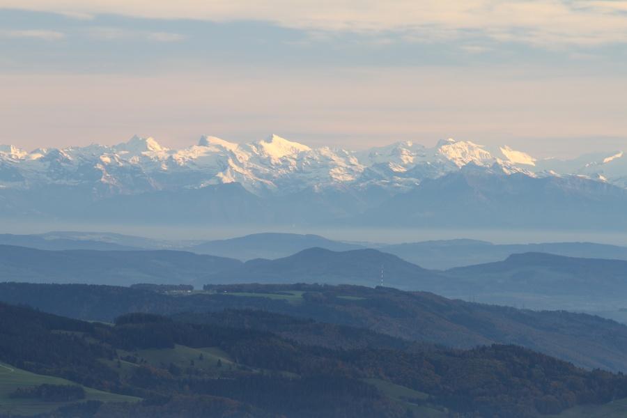 2. Etappe WoG 4-tägig: Vom Belchen ins Münstertal