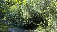 R 17: Durch die Coesfelder Heide