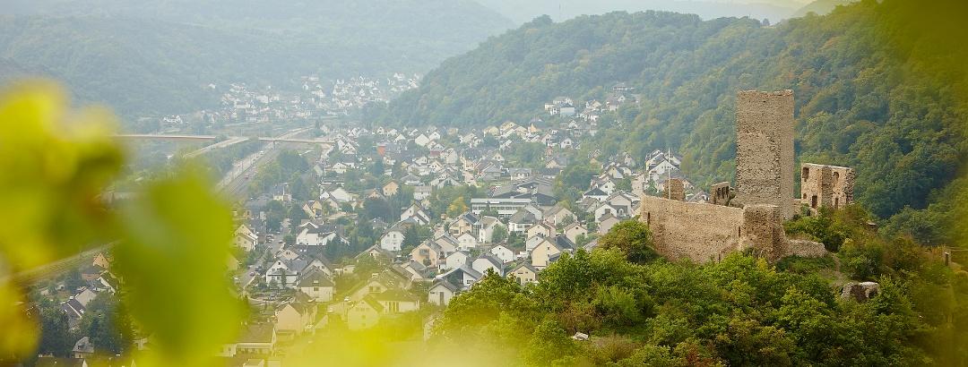 Die Niederburg