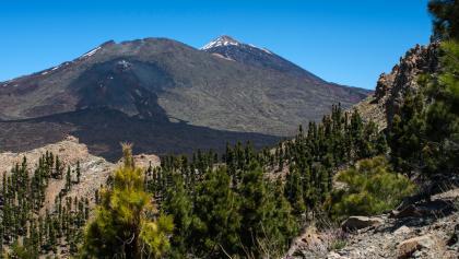 Nochmals herrlicher Blick auf die Nasenlöcher von Teide und Pico Viejo.