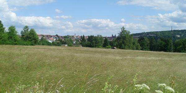 Blick Richtung Süden auf Freudenstadt