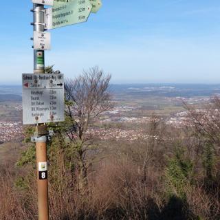 Blick Richtung Tübingen