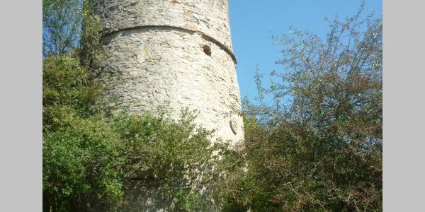 Storchenturm Schöntal