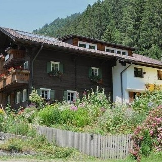 Waldhaus im Sommer