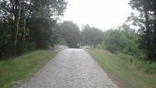 VIA ROMEA Soltau - Wietzendorf (08)