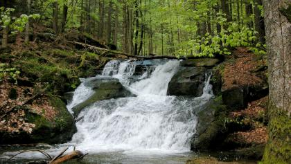 Nagelsteiner Wasserfälle bei normalem Wasser