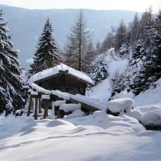 mills in winter