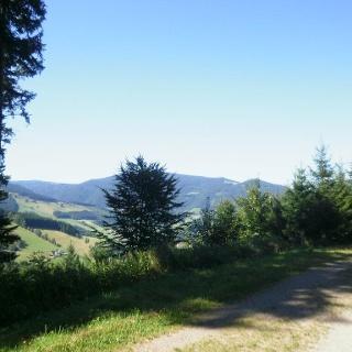 Auf dem Weg zum Hinterwaldkopf