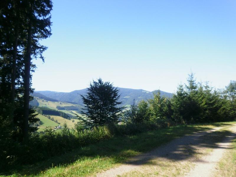 Von Himmelreich über die Höfener Hütte und Hinterwaldkopf nach Hinterzarten