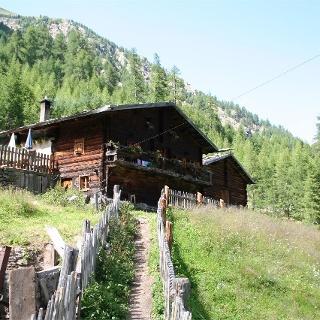 Alpine Farm Mastaun