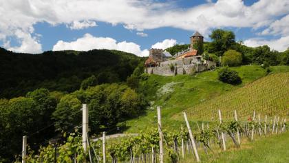 Blick auf die Burg Deutschlandsberg mit ihren umgebenden Weingärten
