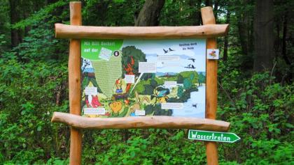 Informationstafel mit Billi Bockert auf der Heide-Biber-Tour