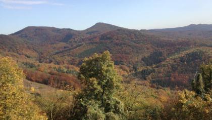Blick über das Siebengebirge