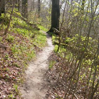 Trail am Bauernkamp