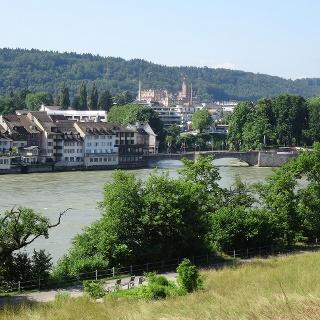 Rheinblick vom Adelberg