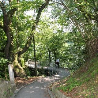 Dürrenbach-Brücke