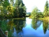 Moorweiher am Wegesrand  - @ Autor: kUNO  - © Quelle: Tourismusverband Tannheimer Tal
