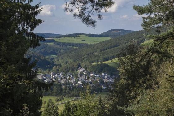 Blick-ins-Land Kahle Pön (Rothaarsteig-Spur und Qualitätstour)