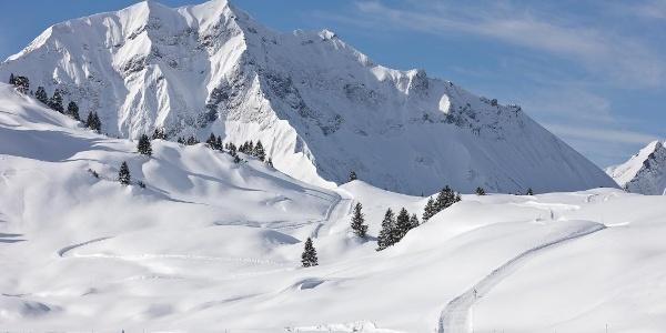 Winterwandern zum Körbersee