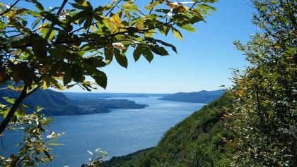 Im Abstieg bieten sich uns immer wieder herrliche Tiefblicke auf den Lago Maggiore.