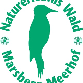 Logo Naturerlebnis Wald
