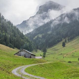 Weg zur Weißenbachalpe
