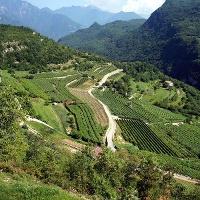 Talpina - Area Protetta del Monte Baldo