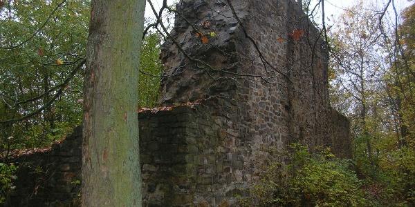 Burgruine Blankenstein bei Gladenbach
