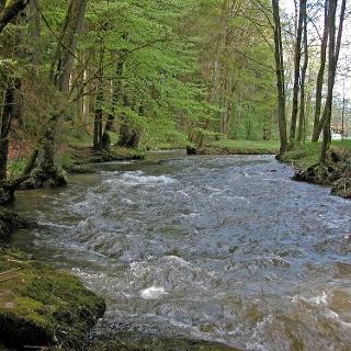 Bogen-/Perlbach vor Untermühlbach