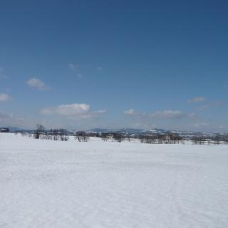 Blick vom Rand des Kempter Waldes Richtung Westen (2)