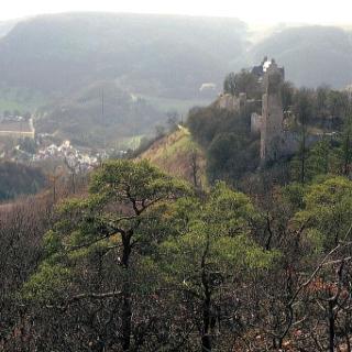 Altenbaumburg und Burgruine Treuenfels (links) mit Talblick auf den Ort Altenbamberg.