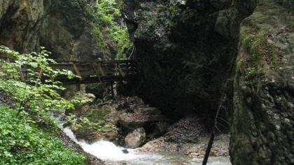 Stege und Brücken gibt es in der Wolfsklamm zu Hauf.