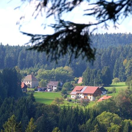 Blick nach Dachsberg-Fröhnd vom Kaiser-Rudolf-Platz aus