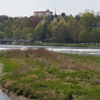 Hängebrücke  Grimma