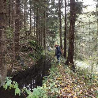 Weg am Unterharzer Grabensystem