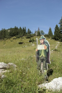 Unser ständiger Wegbegleiter © Tourismusverband Tannheimer Tal