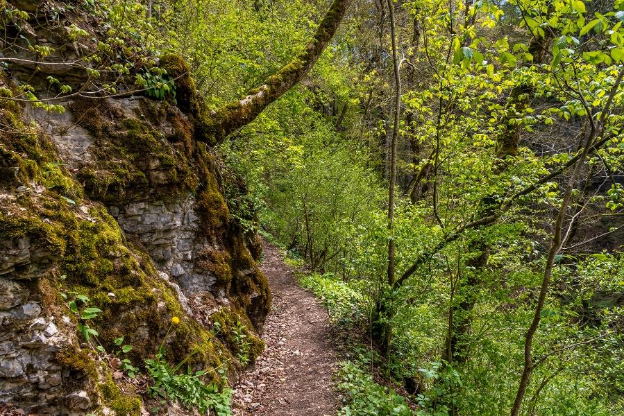 Schluchtensteig Schwarzwald Etappe 1 von  Stühlingen nach Blumberg