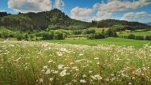 Krušné hory (Horská výzva) - Pochod s Mixitkou