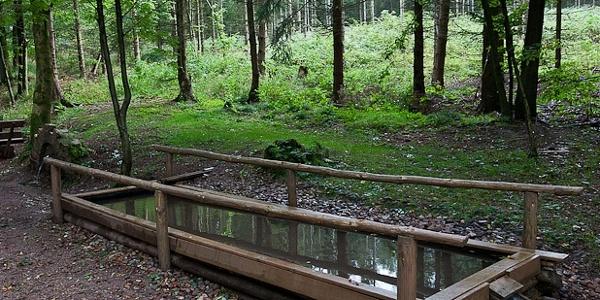 Kneippp-Becken am Hohen Bruch