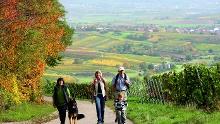 Kleine Weinorte, große Geschichte