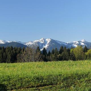 Blick von Bayersoien aus auf die Alpen