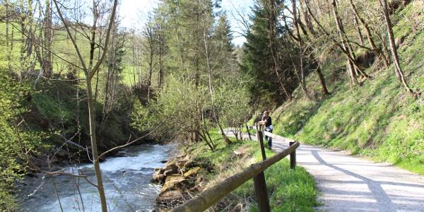 Wanderweg durch die Talbachklamm